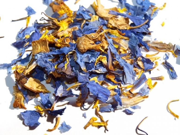 Blue Lotus Flowers