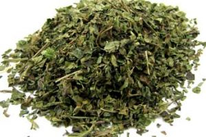 dried organic lemon balm leaf